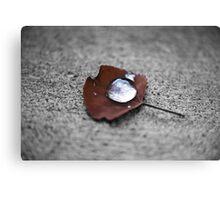 Droplette Canvas Print