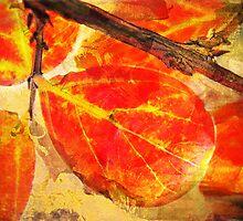 Gold Leaf Fusion by Susan Werby