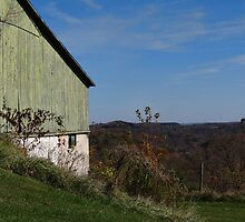 The Green Barn and a View by vigor