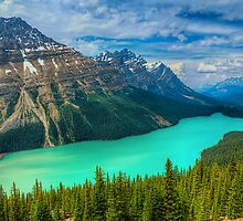 Peyto Lake WideScape by JamesA1