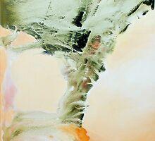 Cyclone Dancer by Frances Langstaff