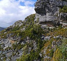 Rockface above Gordon Dam, Southwest N.P., Tasmania, Australia by Margaret  Hyde