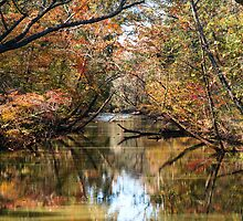 Fall on the Chattahoochee River by charlie mcanulty