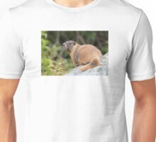 Looking Back Unisex T-Shirt