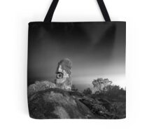 The Sculptures  Tote Bag