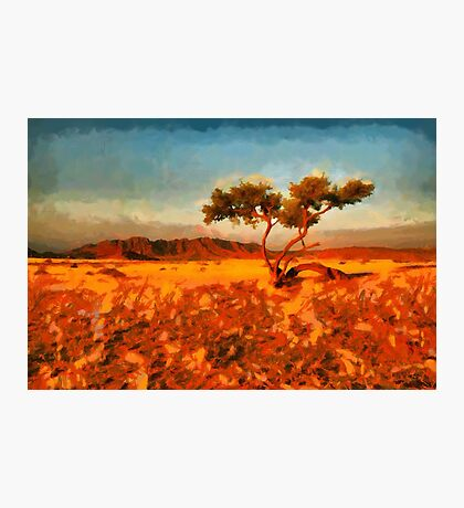 Namibian landscape Photographic Print