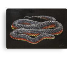 Copperhead live painting Canvas Print