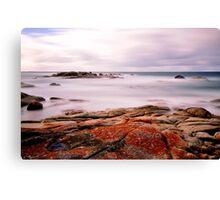 East Coast Tasmania Canvas Print