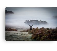 Surveying his Kingdom Canvas Print