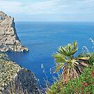 Formentor - Mallorca - Spain by Arie Koene