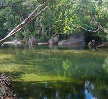 Tranquil Jade Pool by Richard Murias