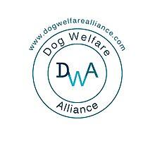 The Dog Welfare Alliance  Photographic Print