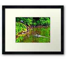 Mother's Call Framed Print