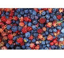 Collage of Wild Berries Blueberries Raspberries Blue Red Photographic Print