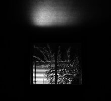 Nightmare Window (night in black and white) by va103