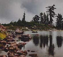 Rocky Pond by Leah Flores