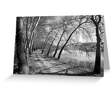 The lakeside road of Kastoria Greeting Card