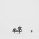 Minimalism by Ryan Wright