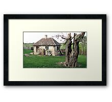 Once Upon a Time in Oaks Land Framed Print