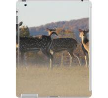 Axis Deer iPad Case/Skin