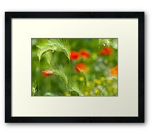Green field grass with red poppies as background Framed Print