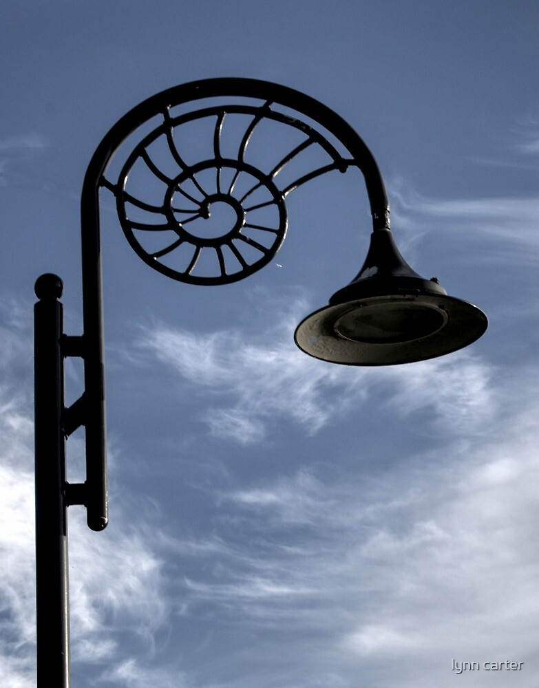 Ammonite Lamp , Lyme Dorset by lynn carter