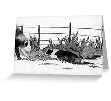 Border Colllie Dog And Cow Greeting Card