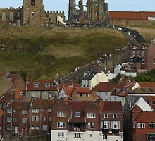 A view of Whitby by davidwatterson
