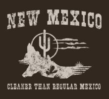 New Mexico. Cleaner than regular Mexico by whereables