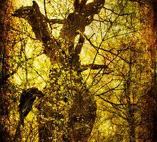 Mythological forest by fodorpetya