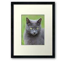 Muv Framed Print