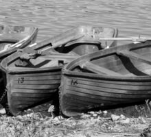 Boating anybody? Sticker