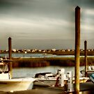 Murrells Inlet, SC  USA - Image 1 by Edith Reynolds