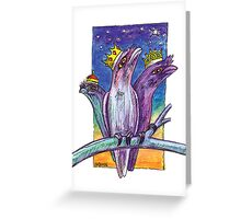 kmay xmas frogmouth kings Greeting Card