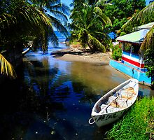 Island Paradise: Alley to the Caribbean, Dominica by thewaxmuseum