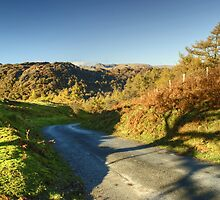 The Road From Tarn Hows by Jamie  Green