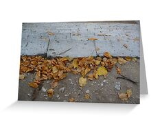 AUTOMN - photography Greeting Card