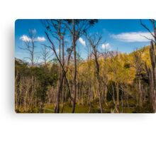 Snake Hill, Cradle Mountain, Tasmania, Australia #2 Canvas Print