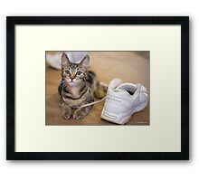 Shoe Laces & Dirty Sneakers Framed Print
