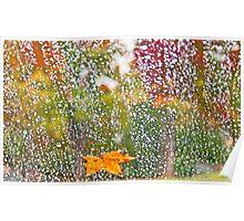 Raindrops in Autumn Poster