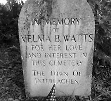 The Memory of Velma by twobrokesistas
