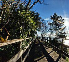 Langmoor-Lister Bridge by Susie Peek
