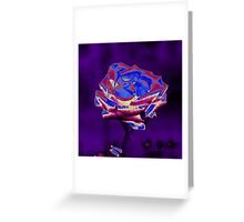 Blue and Purple Rose Greeting Card