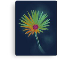 Blue Daisy Flower Canvas Print