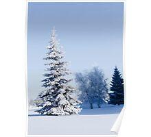 Christmas scenes Poster
