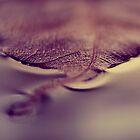 autumn by Ingz
