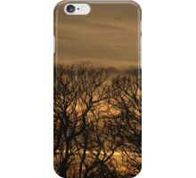 Trees In Burnt Gold Sunset iPhone Case/Skin