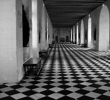 Hall Of Chateau de Chenoceau by Annette Pora