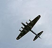 Bomber Plane by Brandon Batie