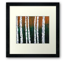 Natural Birch Trees Framed Print